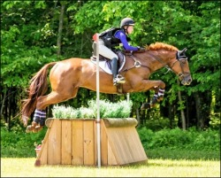 Larkin Hill June Horse Trials 2017