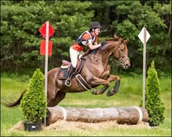Groton House Farm Summer Classic 2017