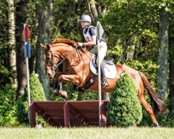 Groton House Farm Fall Classic 2017